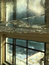 Travail en cours. Pose Feuille d aluminium Hotel La Reserve Beaulieu pour Marion caillaut