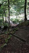 Der beschwerliche Weg von oberhalb der Holzbrücke zum Springbrunnen