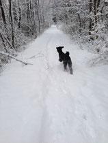 Ich liii-hiiiebe Schnee!