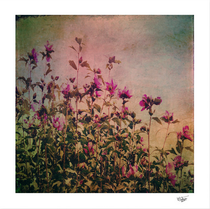 """""""Flowers for an angel"""" Textured vintage pink flowers photograph"""