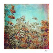 """""""Vintage Garden"""" textured vintage photograph"""