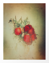 """""""Vintage Red Roses"""" Artistic color photograph available for sale in Society6, Redbubble, Displate and Curioos shops"""
