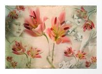 """Hidden under the flowers"" artistic photography"