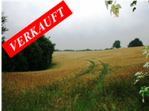 40 Hektar Landwirtschaftliche Flächen (pachtfrei und damit sofort nutzbar) - davon 17 Hektar ausgewiesene Acker-flächen in der Gemarkung von Westensee.  Angeboten zum Kaufpreis von EURO 500.000,--