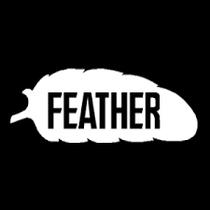 Feather Rasierklingen Japan Blades