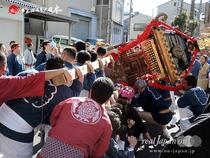 若駒會・成人式記念神輿渡御(2015年1月20日: 東京都荒川区)