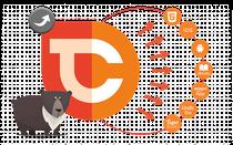Erstellung der Grafik zur Veranschaulichung der verschiedenen Exportformate von TigerCreate; © TigerCreate