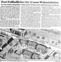 Badische Neuesten Nachrichten vom 11.06.2001