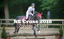 NE Cross 2018