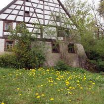 Butschof unterhalb Ruine