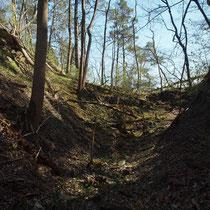 Graben zwischen hinterer und mittlerer Burg