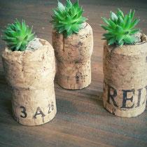 magnetischer Mini-Pflanztopf aus Korken