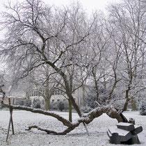 Winteraspekt, Aufnahme-Datum: 01.01.2009