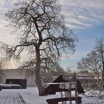 Skulptur im Winteraspekt mit dem Catalpa-Baum im Hintergrund, Aufnahme-Datum: 08.12.2012