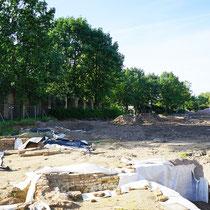 Grabungsstätte bis in den Wurzelbereich der Ungarischen Eiche, Aufnahme-Datum: 21.05.2017