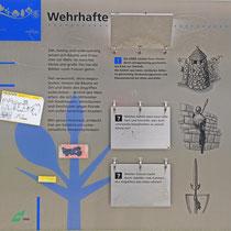 """Baum-Pfad-Informationstafel """"Wehrhafte Gestalten"""",Aufnahme-Datum: 16.04.2006"""