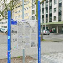 """Baum-Pfad-Informationstafel """"Verwurzelte Zeit Platanen-Tagebuch"""" Anfang Kuhlenwall, Aufnahme-Datum: 22.02.2020"""
