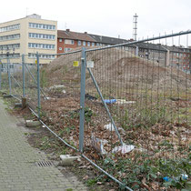 Von Bäumen abgeholzte Nordseite des Rabbiner Neumark-Weges, Aufnahme-Datum: 22.02.2020