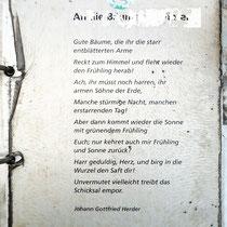 """Informations-Tafel mit einem Gedicht von Johann Gottfried Herder """"An die Bäume im Winter"""",  Aufnahme-Datum: 12.02.2020"""