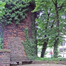 Lindenbäume am Schäferturm, Aufnahme-Datum: n.b.