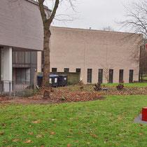Skulptur vor der gerodeten Abpflanzung (Prunus lusitanica), Aufnahme-Datum: 12.12.2010