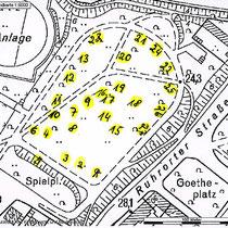 Baumlehrpfad, hier: Lageplan Baumstandorte, erstellt von städtischen Mitarbeitern des botanischen Garten in Duisburg-Hamborn, mit frdl. Überlassung von Herrn Frank Smejkal