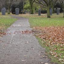 Herbst-Aspekt, Aufnahme-Datum: 13.12.2012