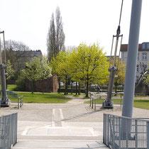 Blick von der Bogenbrücke auf das Ende des Baum-Pfades. Hinter dem blühenden Spitzahorn  ein Gerüst mit dem aufliegenden Wurzelteller einer Birke. Aufnahme-Datum: 24.04.2006