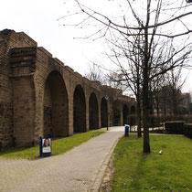 Blick entlang der Stadtmauer mit einer Baumreihe aus Ungarischen Eichen, Aufnahme-Datum: 07.04.2006