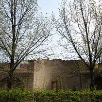 Blick auf das durch Bäumen eingefasste Mahnmal an die Duisburger Synagoge und die Opfer der Verfolgung,, Aufnahme-Datum: 24.04.2006
