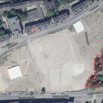 Grabungsfläche, der rot umrandete Bereich zeigt die auch noch abgestorbenen Ungarischen Eiche Aufnahme-Datum Tim-online 2019