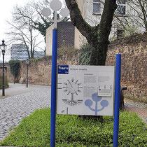 Informationsstand des Baum-Pfades am Stapeltor,  Aufnahme-Datum: 16.04.2006