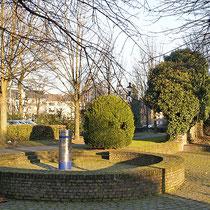 Detail mit Buchsbaum und Efeu, Grünanlage Rabbiner Neumark-Weg, Aufnahme-Datum: 14.01.2006