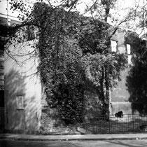 Quelle: Stadtarchiv, Stadtmauer am Ausbruch der Gutenbergstraße 1952