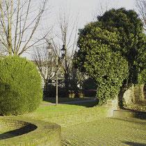 Detail mit Buchsbäumen, Grünanlage Rabbiner Neumark-Weg, Aufnahme-Datum: 14.01.2006