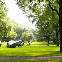 Parkleben im Spätsommer, Aufnahme-Datum: 01.09.2004