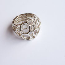 nervous system - 2 layer center Ring