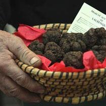 Panier de truffes (diamant noir du Quercy)