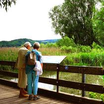 An der Mündung der Stockacher Aach - Foto: NABU/S. Schwab