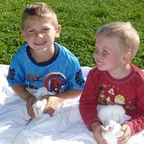 meine Jungs helfen mir gerne bei den jungen Tauben, so werden sie schnell zahm und zutraulich.