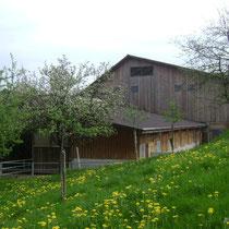 Fust's Bioladen Waldkirch St.Gallen