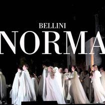 Vincenzo Bellini und seine lyrischen Werke