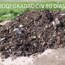 biodegradacion a los 80 dias