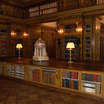 Gartenpalais Liechtenstein Restaurierung 2000-2002 Bibliothek Marmorierung
