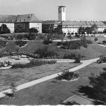 Der Schuttberg - Neuanlage der Grünanlage auf Kriegstrümmern - Danke an Michael Kupfer