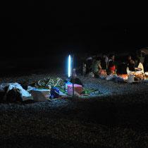 Ein nächtliches Strandpicknick kann oft böse Folgen für herumirrende Schlüpflinge haben