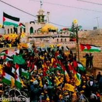 Vestbredden: Modstanden i Bilin mod apartheidsmuren