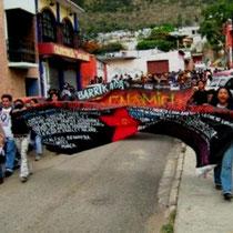 Mexico: Oaxacas folkemagtsbevægelse