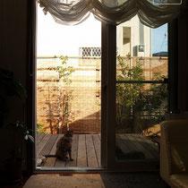 お部屋からの眺めも良好!やんわりと目隠しをしたいとのご要望通りです。