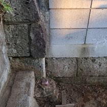 角地の境界杭はコンクリートで囲われていて、側近に柱を立てるのが困難でした。